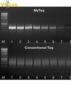 Dung dịch Master Mix PCR - MyTaq Mix 2X